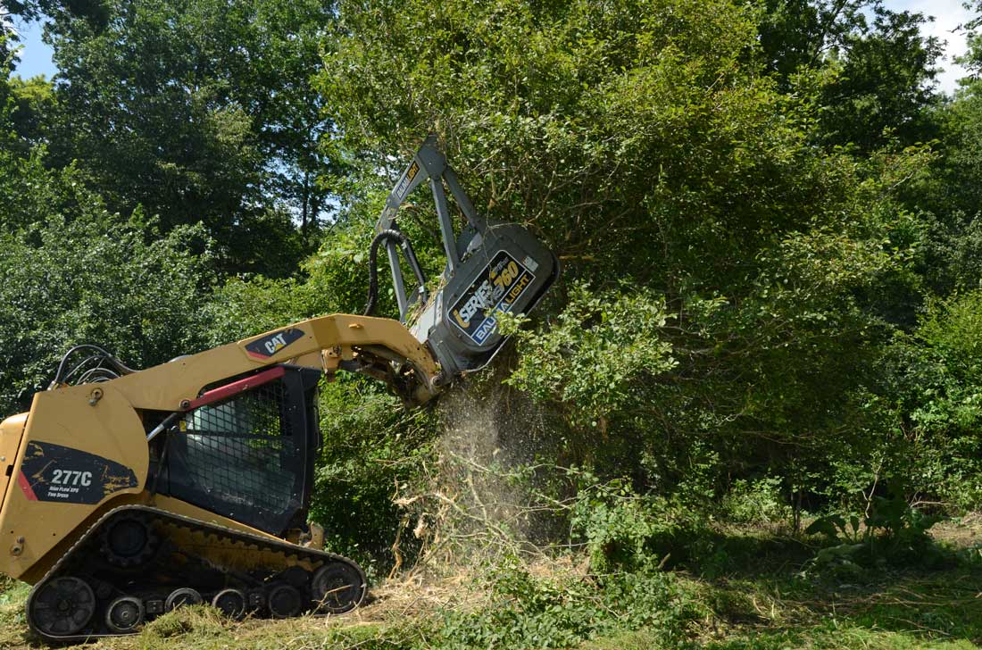 Baumalight MS760 mounted on CAT 227C skidsteer reaching up to clear an overhead bush