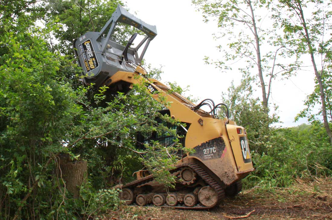 Baumalight iSERiES on CAT skidsteer reaching up to mulch high branches