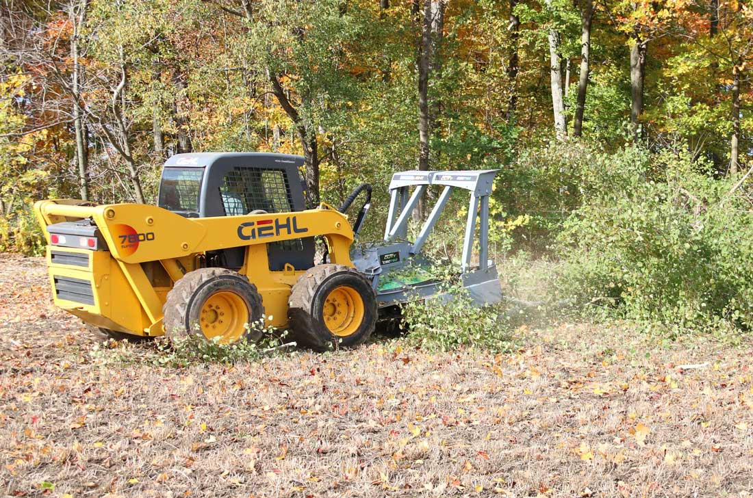 Brush Cutt cleaning up fence line