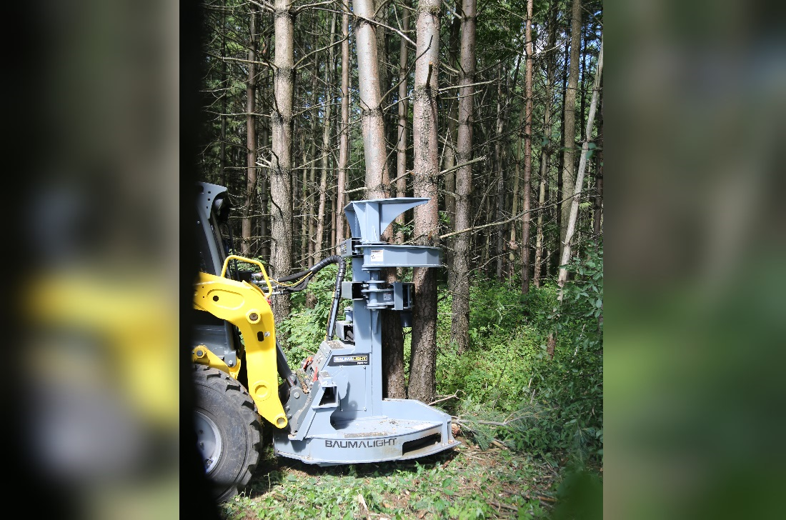 Tree Saw with Accumulator Arm