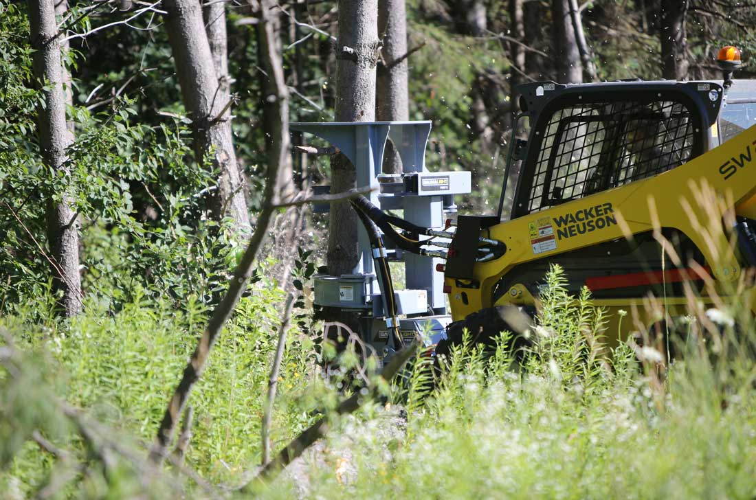 Tree saw with grabers on Wacker Neuson skid steer