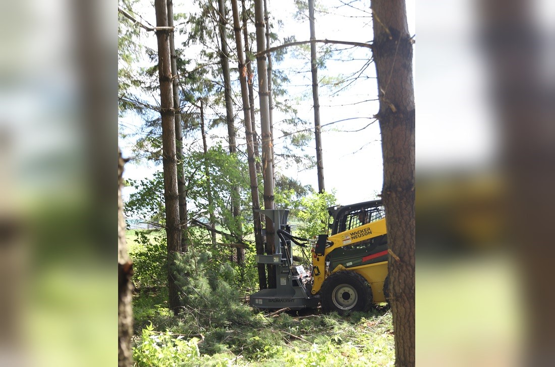 drive to tree felling head